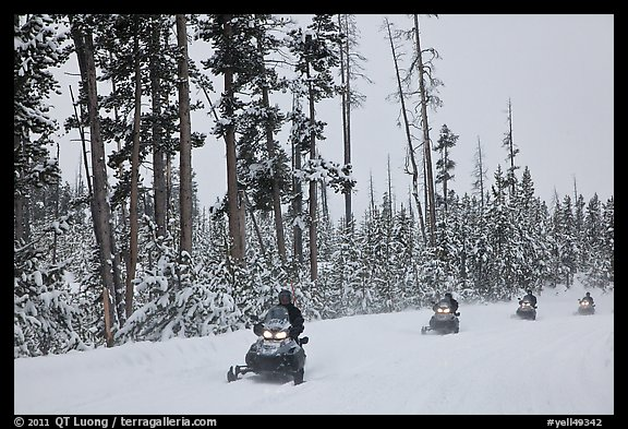 Snowmobilers. Yellowstone National Park (color)