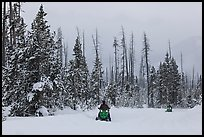 Snowmobiles. Yellowstone National Park, Wyoming, USA. (color)