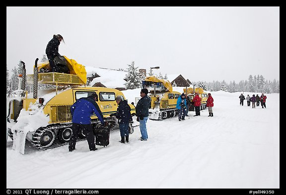 Bombardier snow busses being unloaded at Flagg Ranch. Yellowstone National Park, Wyoming, USA.