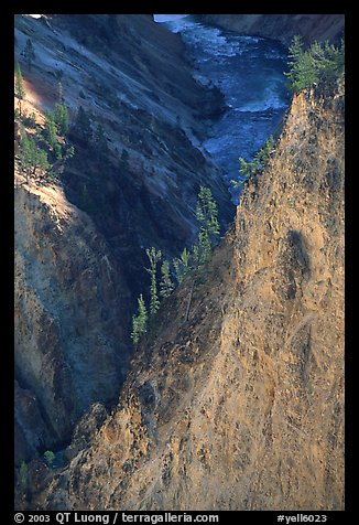 Wall and River in Grand Canyon of the Yellowstone. Yellowstone National Park (color)