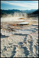Main Terrace, Mammoth Hot Springs. Yellowstone National Park ( color)