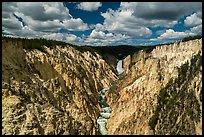 Grand Canyon of the Yellowstone from Artists Point. Yellowstone National Park ( color)