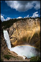 Lower Falls of the Yellowstone River from Uncle Tom Trail. Yellowstone National Park ( color)