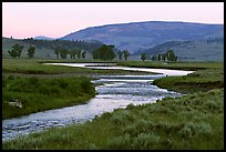 Soda Butte Creek, Lamar Valley, dawn. Yellowstone National Park, Wyoming, USA.