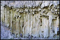 Basalt columns. Yellowstone National Park, Wyoming, USA. (color)