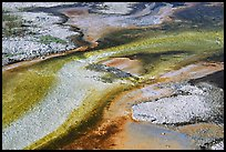 Colorful algaes patterns, Biscuit Basin. Yellowstone National Park ( color)