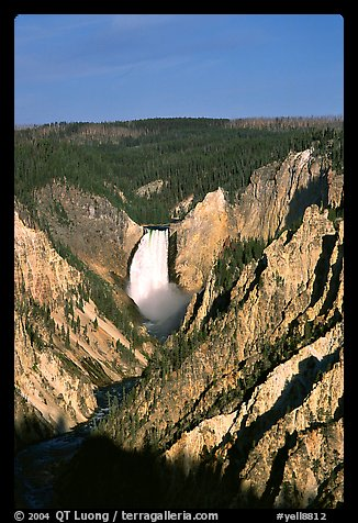 Falls of the Yellowstone River, early morning. Yellowstone National Park, Wyoming, USA.