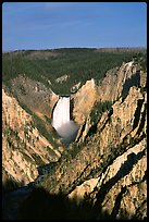 Falls of the Yellowstone River, early morning. Yellowstone National Park ( color)