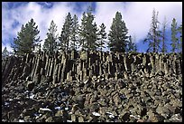 Basalt columns. Yellowstone National Park, Wyoming, USA.