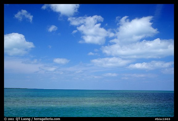 Sky and Elkhorn coral reef. Biscayne National Park, Florida, USA.
