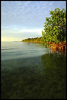 Elliott Key shore on Biscayne Bay, sunset. Biscayne National Park, Florida, USA. (color)