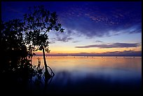Sunset on Biscaye Bay from Elliott Key. Biscayne National Park, Florida, USA. (color)