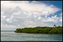 Adams Key, Biscayne Bay, and summer clouds. Biscayne National Park, Florida, USA. (color)
