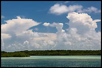 Barrier island, shallow waters, and afternoon clouds. Biscayne National Park, Florida, USA. (color)