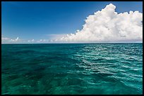 Reef and clouds. Biscayne National Park ( color)