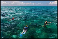 Snorklers and reef. Biscayne National Park, Florida, USA. (color)