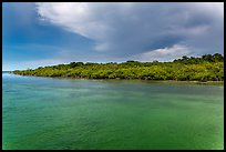 Adams Key, afternoon. Biscayne National Park, Florida, USA. (color)