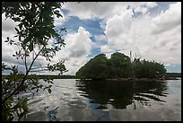 Mangrove islet, Biscayne Bay. Biscayne National Park, Florida, USA. (color)