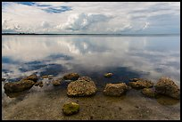 Rocks and Biscayne Bay reflections. Biscayne National Park, Florida, USA. (color)