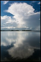 Cumulonimbus clouds, and mangrove-covered islets, Biscayne Bay. Biscayne National Park ( color)