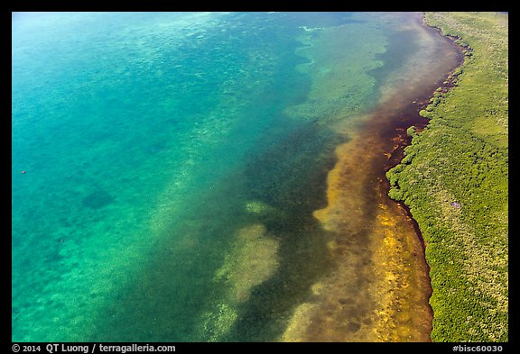 Aerial view of reef, shoal, coastline, and forest. Biscayne National Park (color)