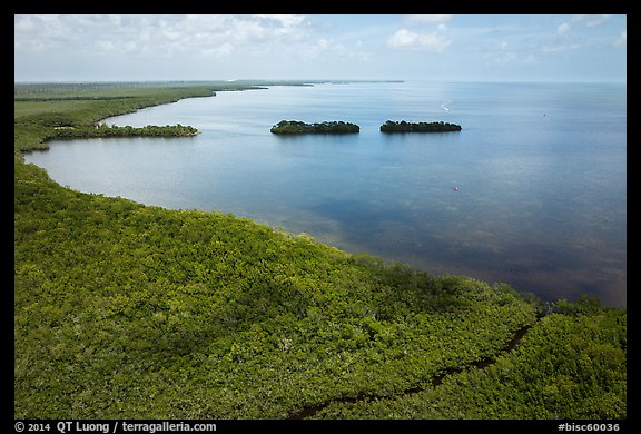 Aerial view of mangrove coast in islets. Biscayne National Park (color)