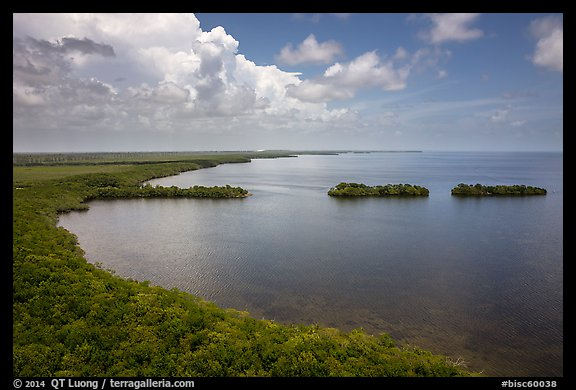 Aerial view of mainland coast near Convoy Point. Biscayne National Park (color)