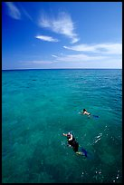 Snorkelers over a coral reef. Biscayne National Park, Florida, USA.