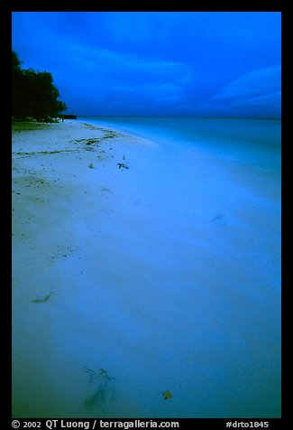 Beach at dusk. Dry Tortugas National Park (color)