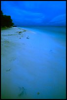 Beach at dusk. Dry Tortugas National Park ( color)