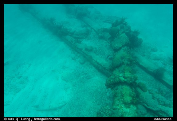 Part of Windjammer wreck on ocean floor. Dry Tortugas National Park (color)
