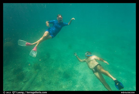 Couple free diving. Dry Tortugas National Park (color)