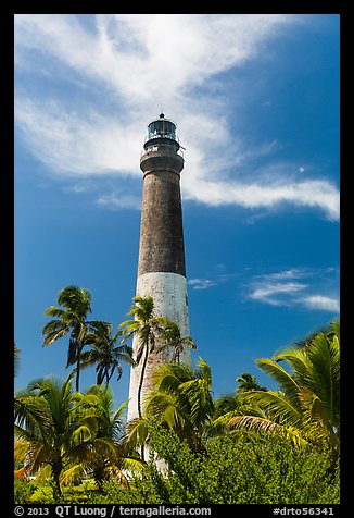 Palm trees and Dry Tortugas Light Station, Loggerhead Key. Dry Tortugas National Park (color)