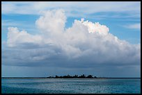 Vegetation-covered Long Key below tropical cloud. Dry Tortugas National Park ( color)