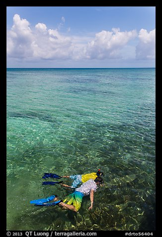 Man and boy snorkeling on reef. Dry Tortugas National Park (color)