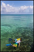 Man and boy snorkeling on reef. Dry Tortugas National Park, Florida, USA. (color)