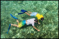 Man and boy seen snorkeling from above. Dry Tortugas National Park, Florida, USA. (color)