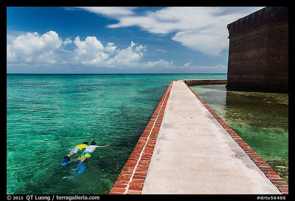Snorkeling next to Fort Jefferson seawall. Dry Tortugas National Park (color)