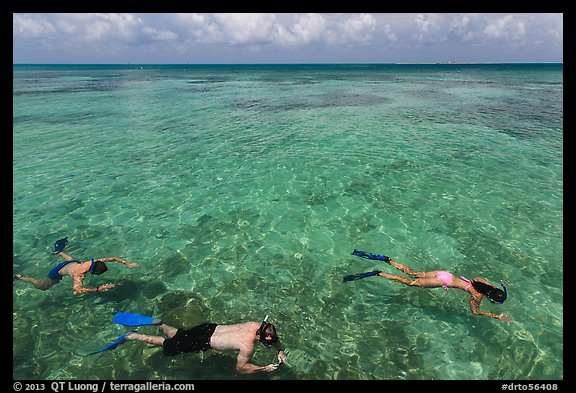 Snorkelers and reef, Garden Key. Dry Tortugas National Park (color)