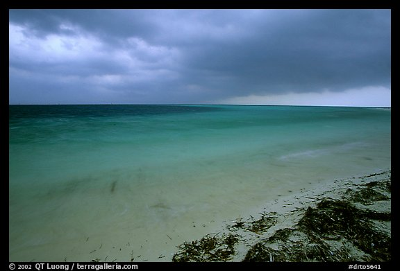 Approaching storm from Bush Key. Dry Tortugas National Park (color)