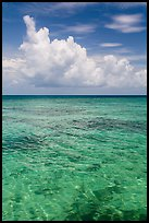 Reef and tropical clouds. Dry Tortugas National Park ( color)