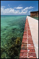 Seawall and coral reefs. Dry Tortugas National Park ( color)