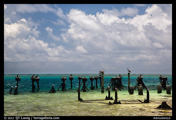 South coaling dock ruins and seabirds, Garden Key. Dry Tortugas National Park (color)