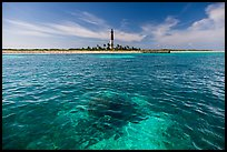 Coral head and Loggerhead Key light. Dry Tortugas National Park, Florida, USA. (color)