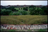 Grassy interior of Fort Jefferson. Dry Tortugas National Park ( color)