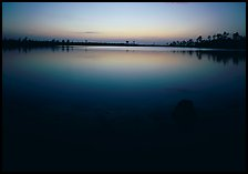 Pine Glades Lake, dusk. Everglades  National Park ( color)