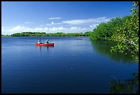 Canoists fishing. Everglades National Park ( color)
