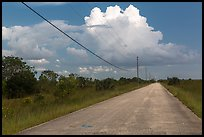 Road and cloud, Chekika. Everglades National Park, Florida, USA. (color)