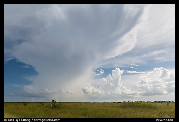 Storm clouds, Chekika. Everglades National Park (color)