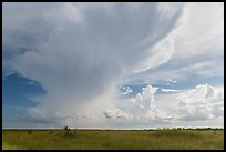 Storm clouds, Chekika. Everglades National Park, Florida, USA. (color)